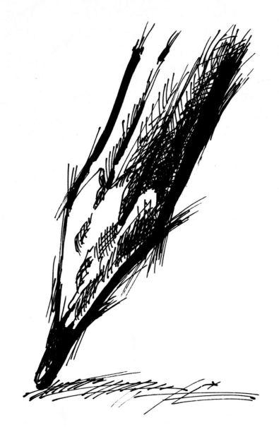 piktogram - ołówek